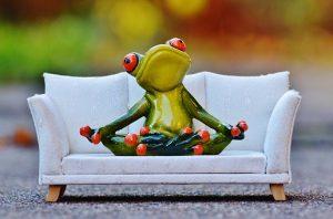 диван и жаба
